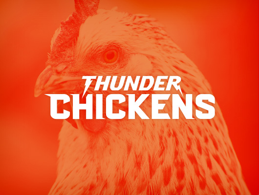 Design Logo / Thunder Chickens