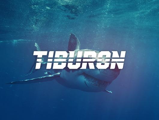 Design Logo / Tiburon