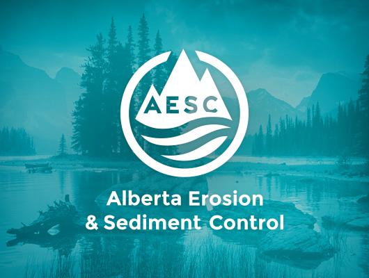 Design Logo & Cartes d'affaires / AESC
