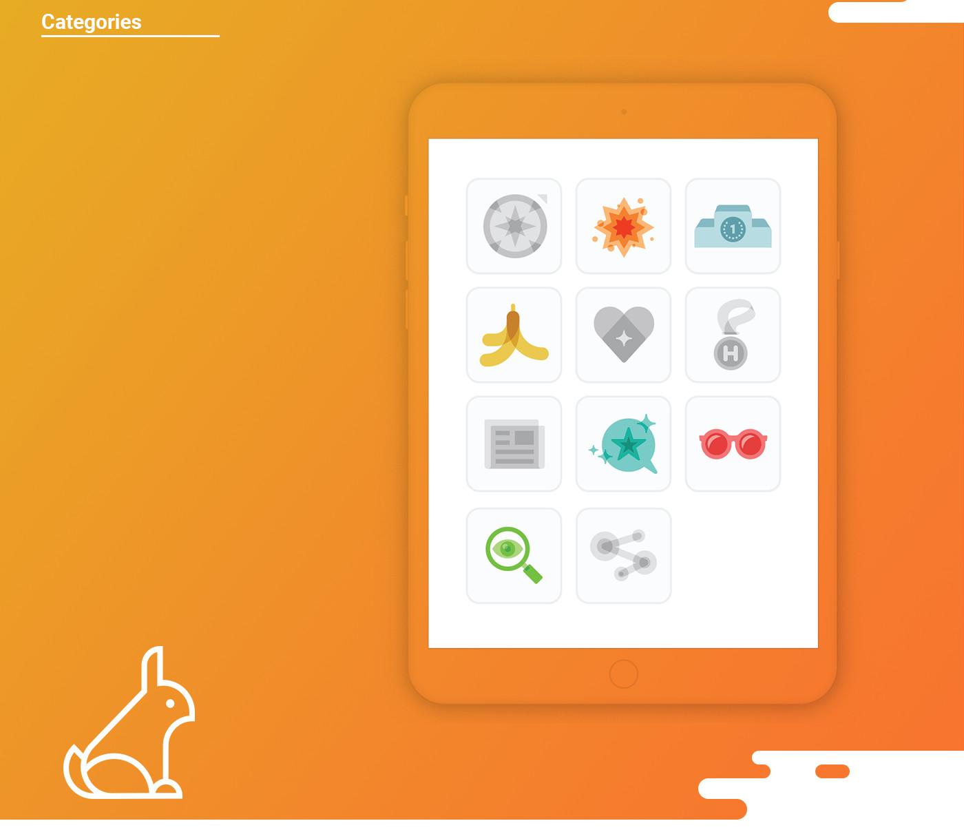 Application categories design for petsqui