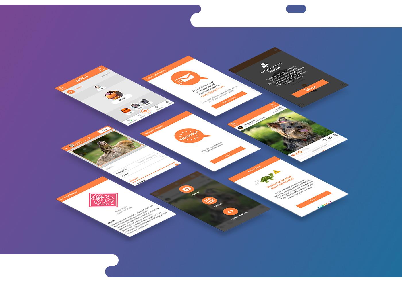 Application design for Montreal startup