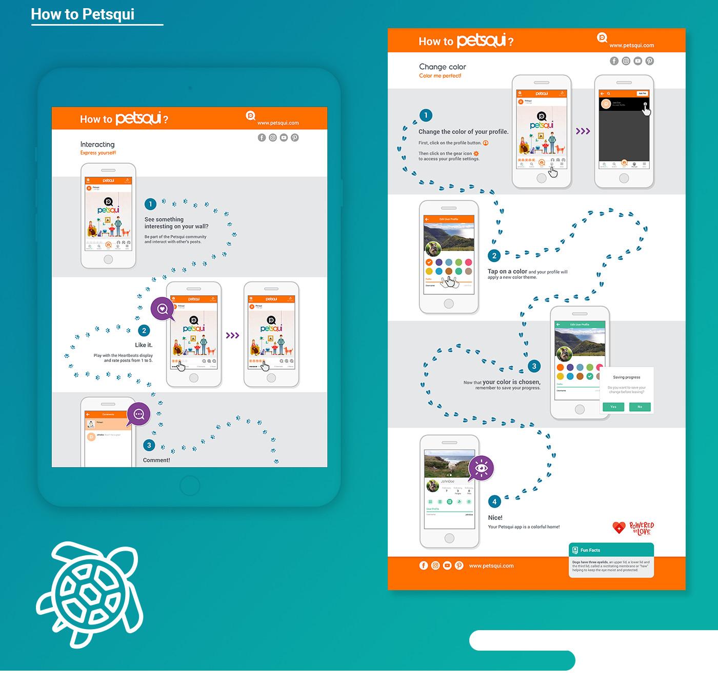 infographics design for petsqui
